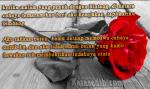 Kata Kata Bijak Paling Romantis Buat Pacar Yang Kita Cinta