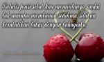 Kata Kata Mutiara Yang Menyentuh Hati Buat Kekasih Tercinta